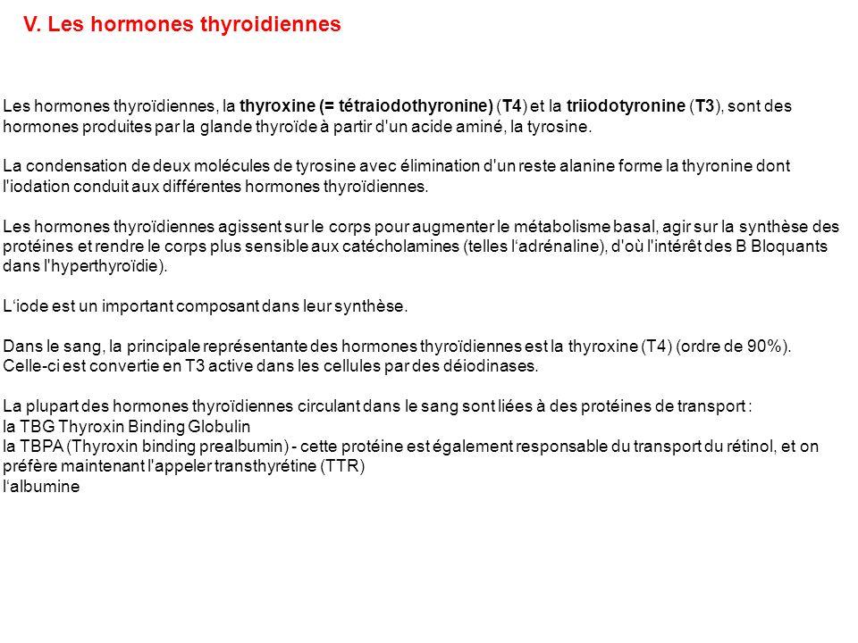V. Les hormones thyroidiennes