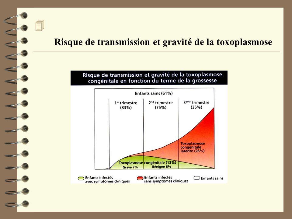Risque de transmission et gravité de la toxoplasmose