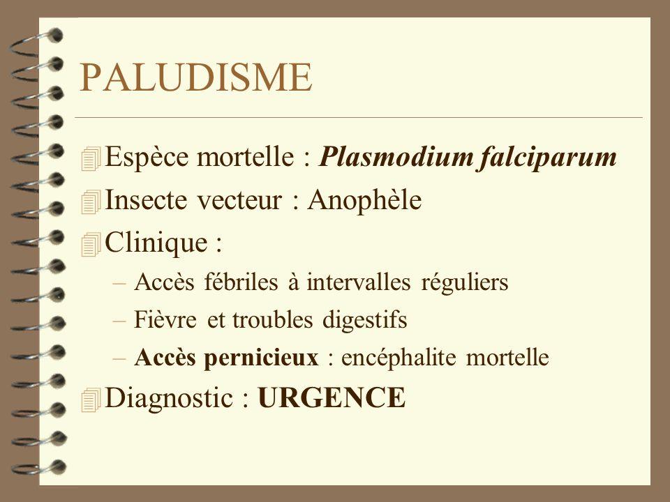 PALUDISME Espèce mortelle : Plasmodium falciparum