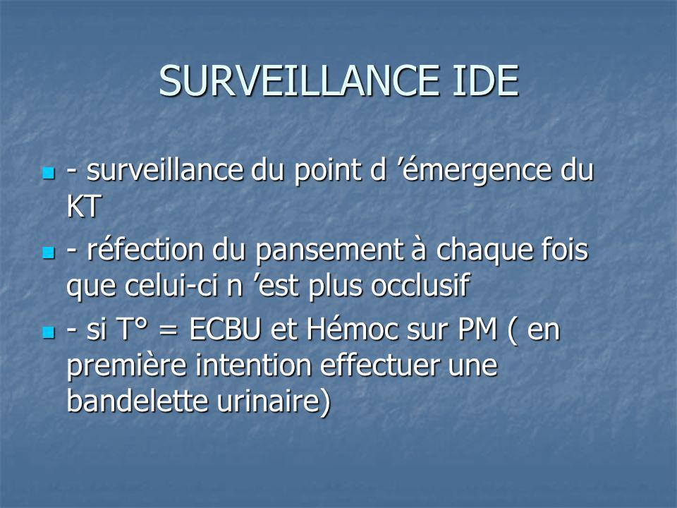 SURVEILLANCE IDE - surveillance du point d 'émergence du KT