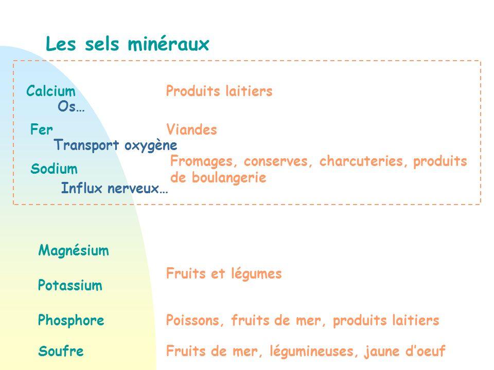 Les sels minéraux Calcium Produits laitiers Os… Fer Viandes