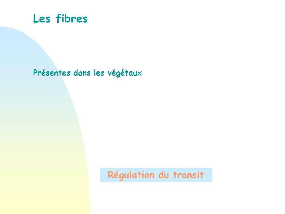 Les fibres Présentes dans les végétaux Régulation du transit