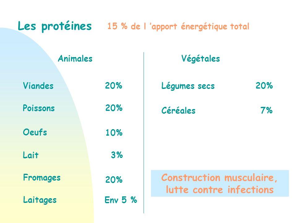 Construction musculaire, lutte contre infections