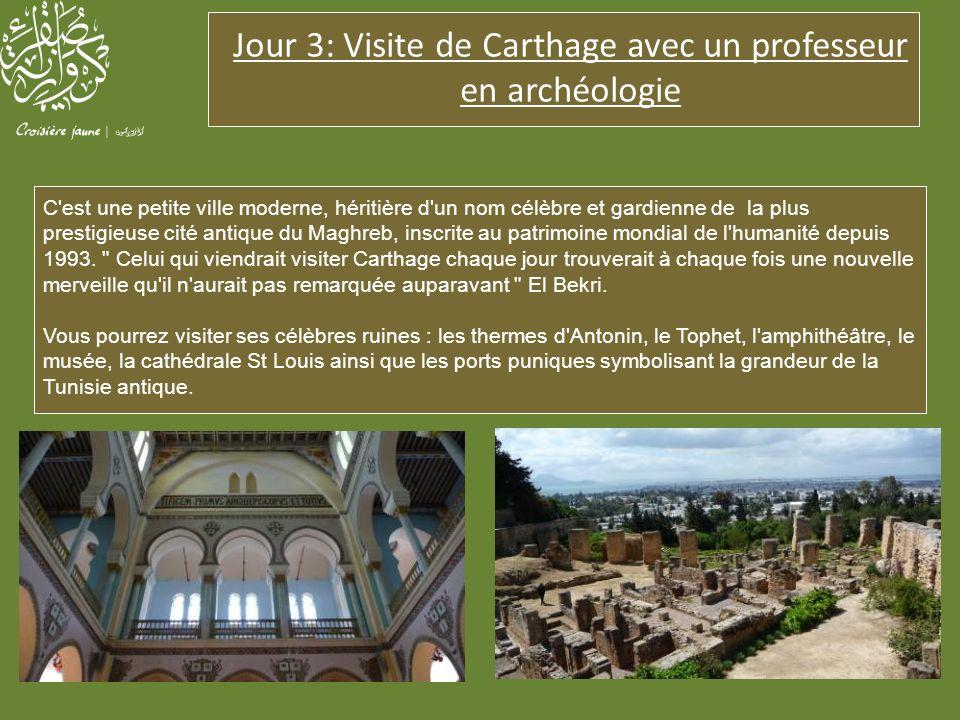 Jour 3: Visite de Carthage avec un professeur en archéologie