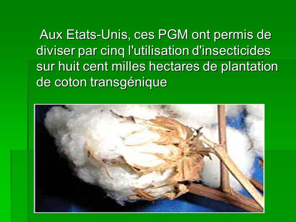 Aux Etats-Unis, ces PGM ont permis de diviser par cinq l utilisation d insecticides sur huit cent milles hectares de plantation de coton transgénique