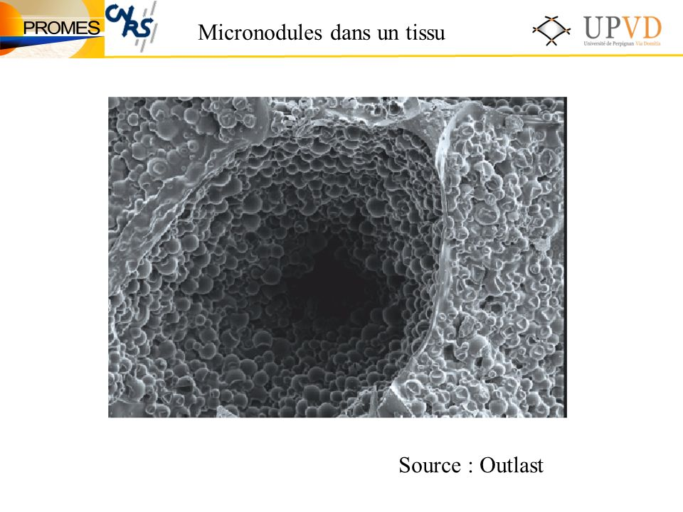 Micronodules dans un tissu