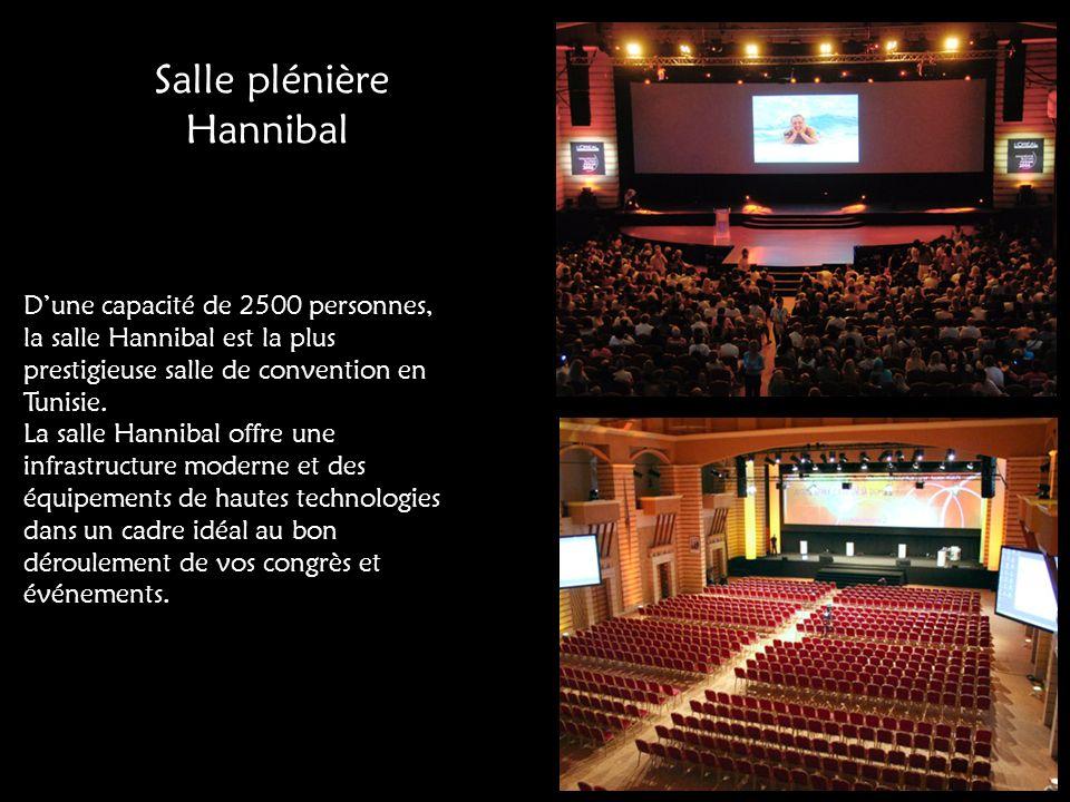 Salle plénière Hannibal