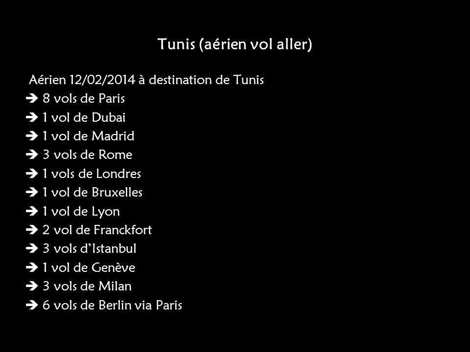 Tunis (aérien vol aller)