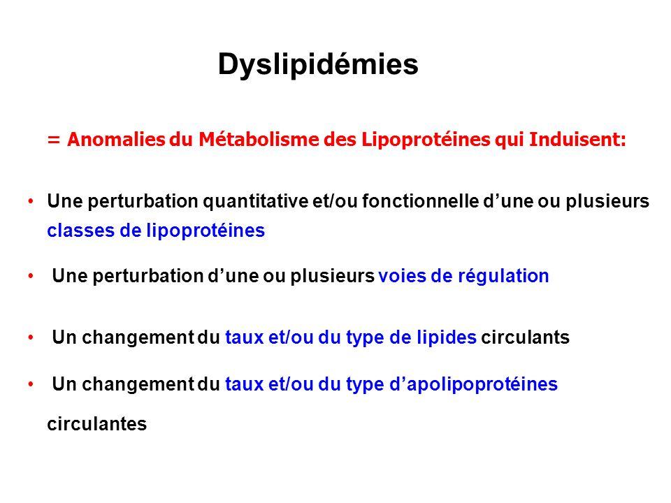 Dyslipidémies = Anomalies du Métabolisme des Lipoprotéines qui Induisent:
