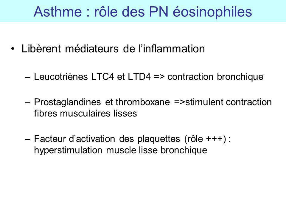 Asthme : rôle des PN éosinophiles