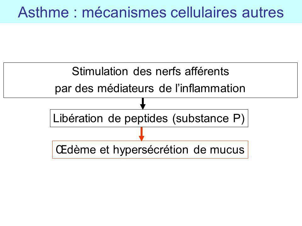 Asthme : mécanismes cellulaires autres
