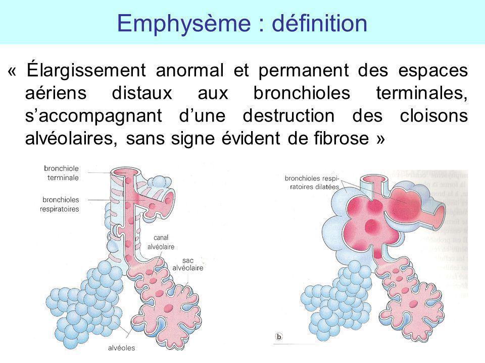 Emphysème : définition