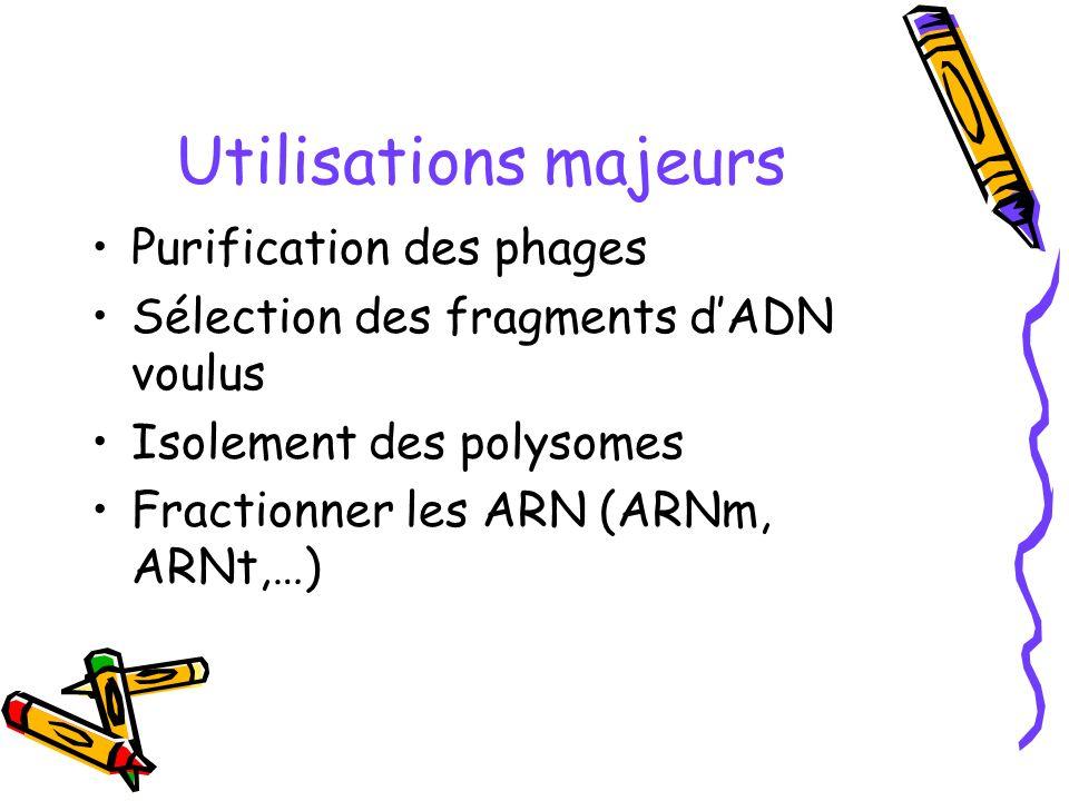 Utilisations majeurs Purification des phages