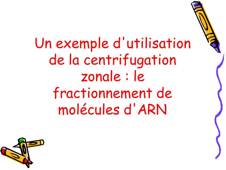 Un exemple d utilisation de la centrifugation zonale : le fractionnement de molécules d ARN
