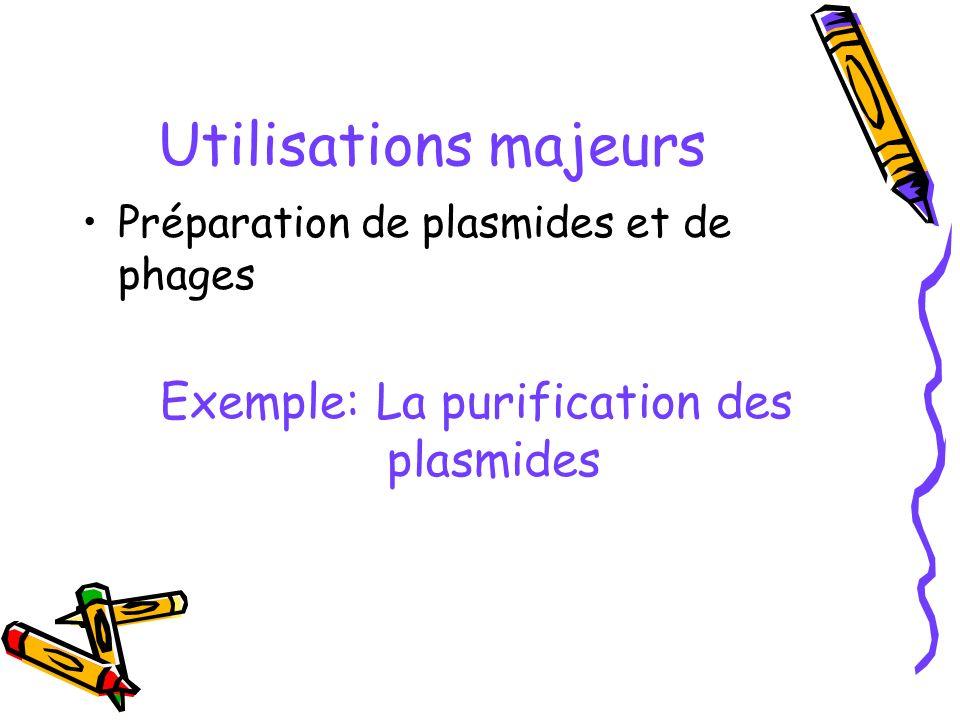 Exemple: La purification des plasmides