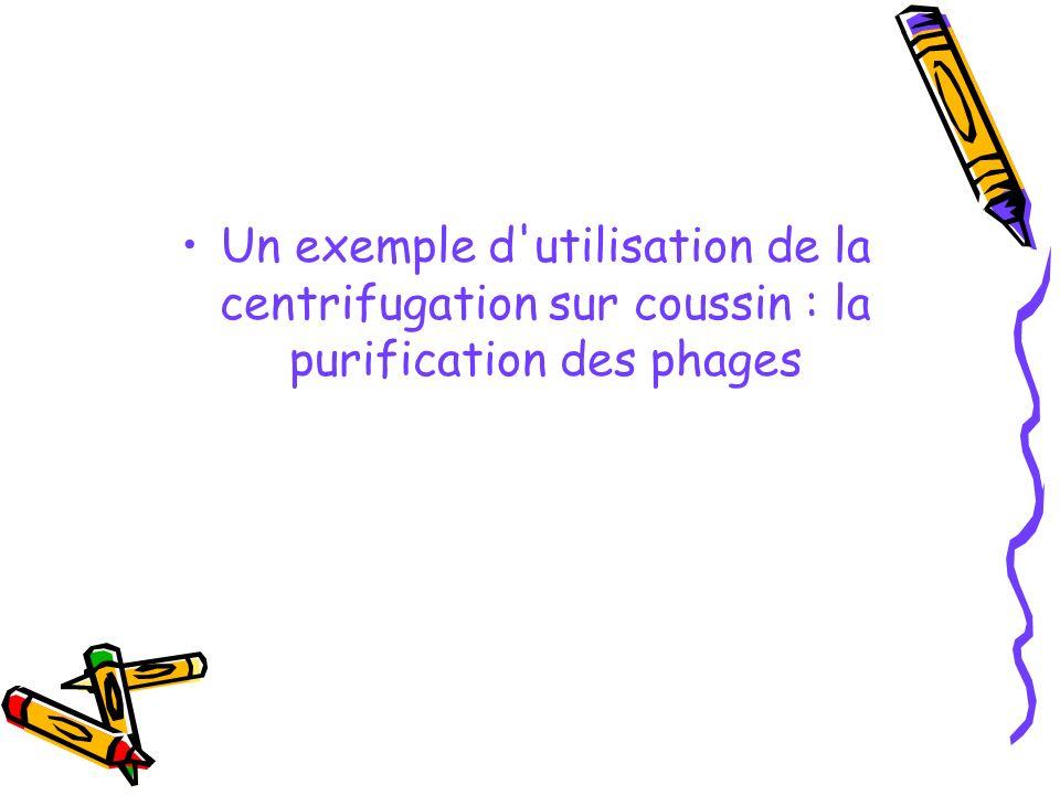 Un exemple d utilisation de la centrifugation sur coussin : la purification des phages