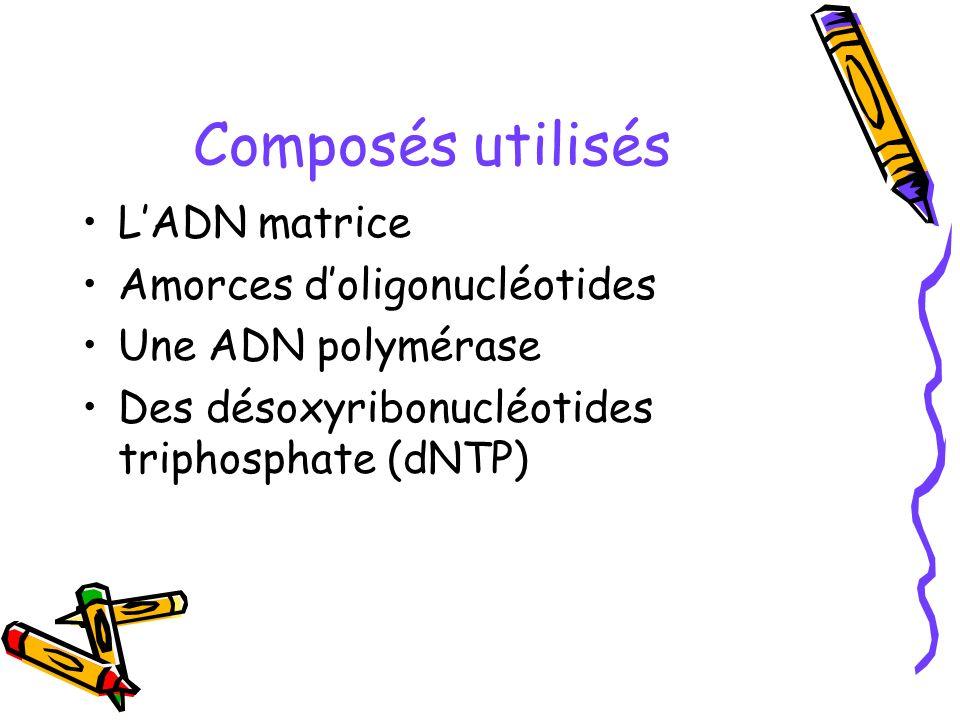 Composés utilisés L'ADN matrice Amorces d'oligonucléotides