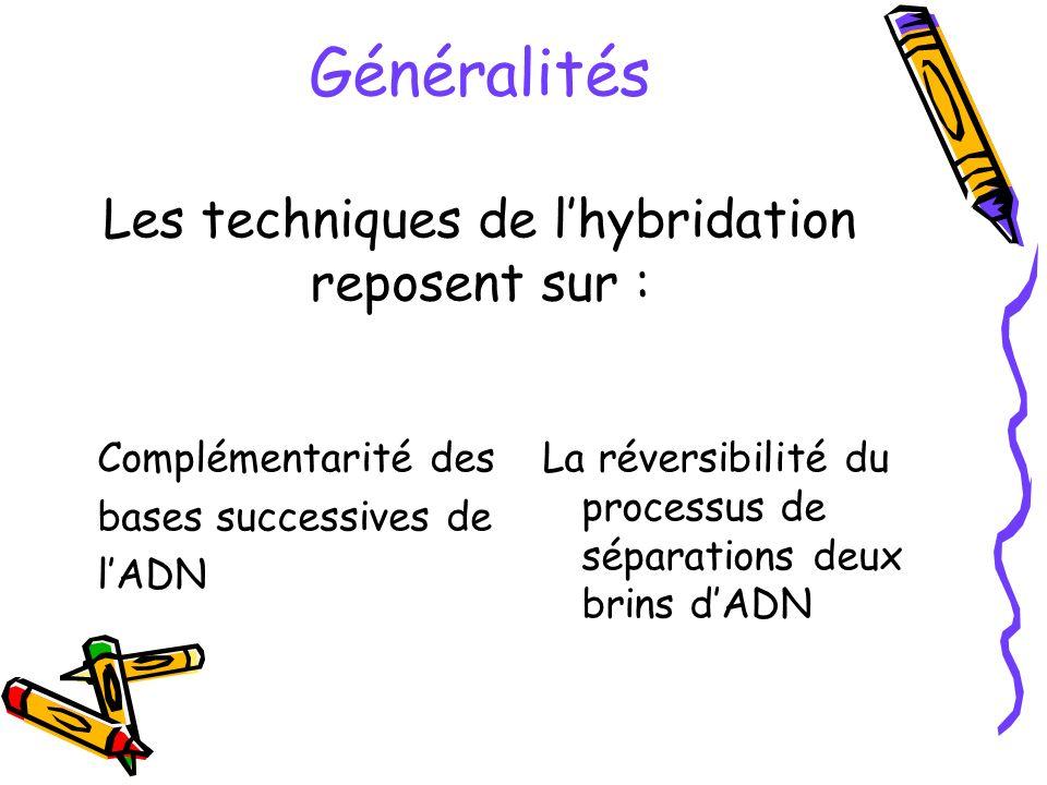 Généralités Les techniques de l'hybridation reposent sur :