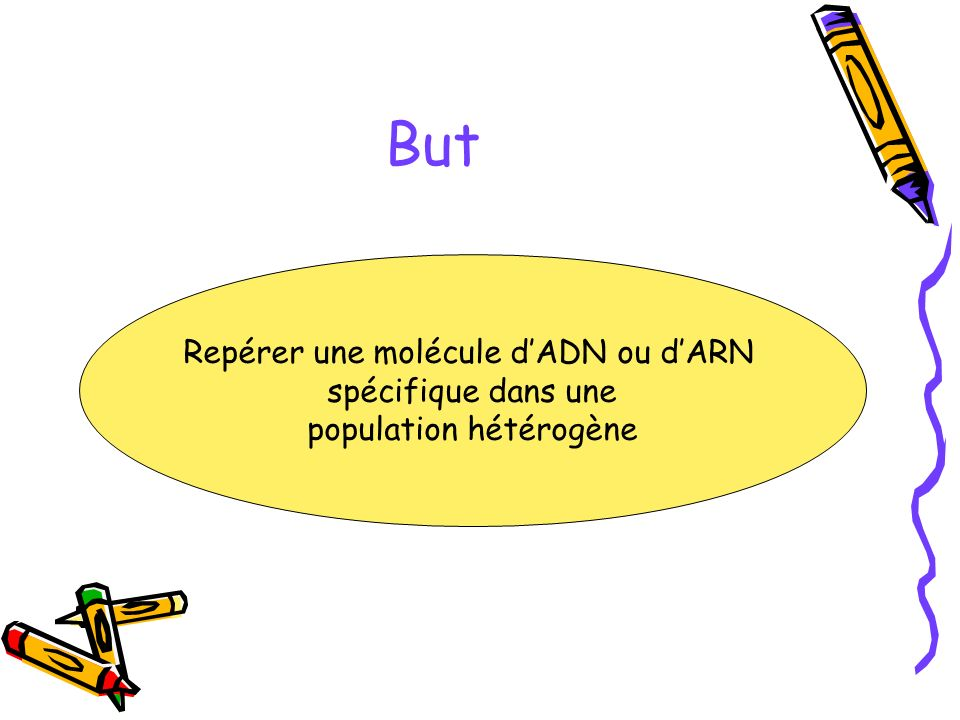 But Repérer une molécule d'ADN ou d'ARN spécifique dans une