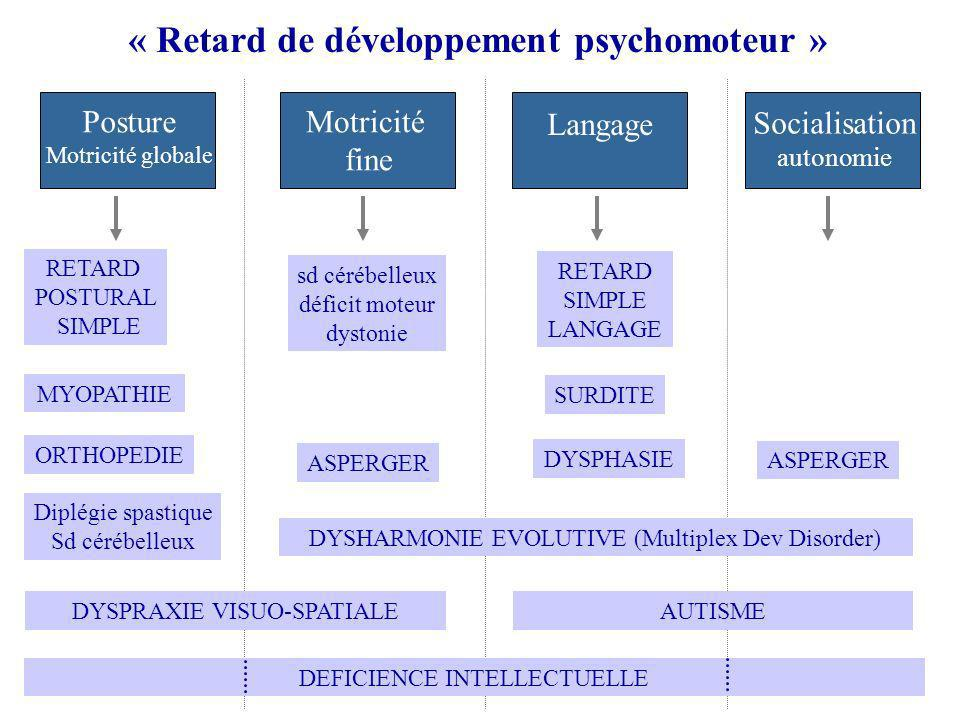 « Retard de développement psychomoteur »