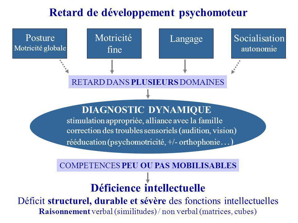 Retard de développement psychomoteur