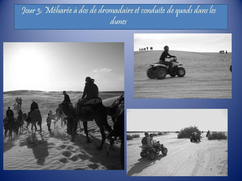 Jour 3: Méharée à dos de dromadaire et conduite de quads dans les dunes