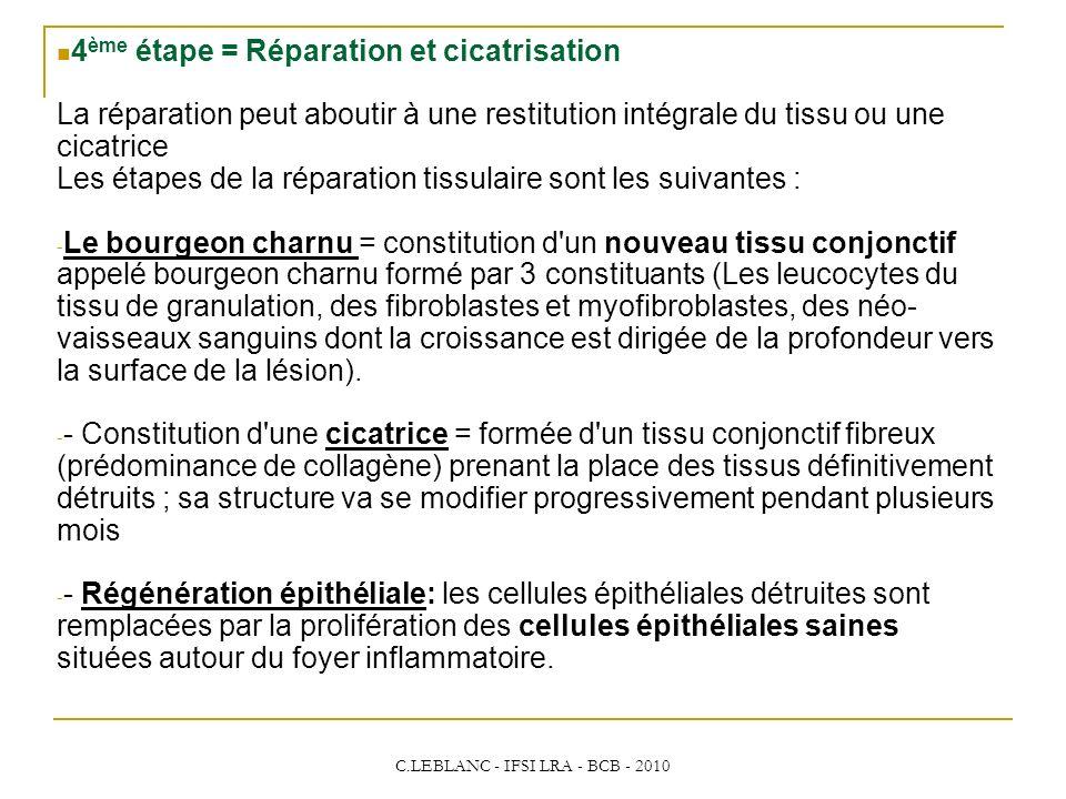 C.LEBLANC - IFSI LRA - BCB - 2010