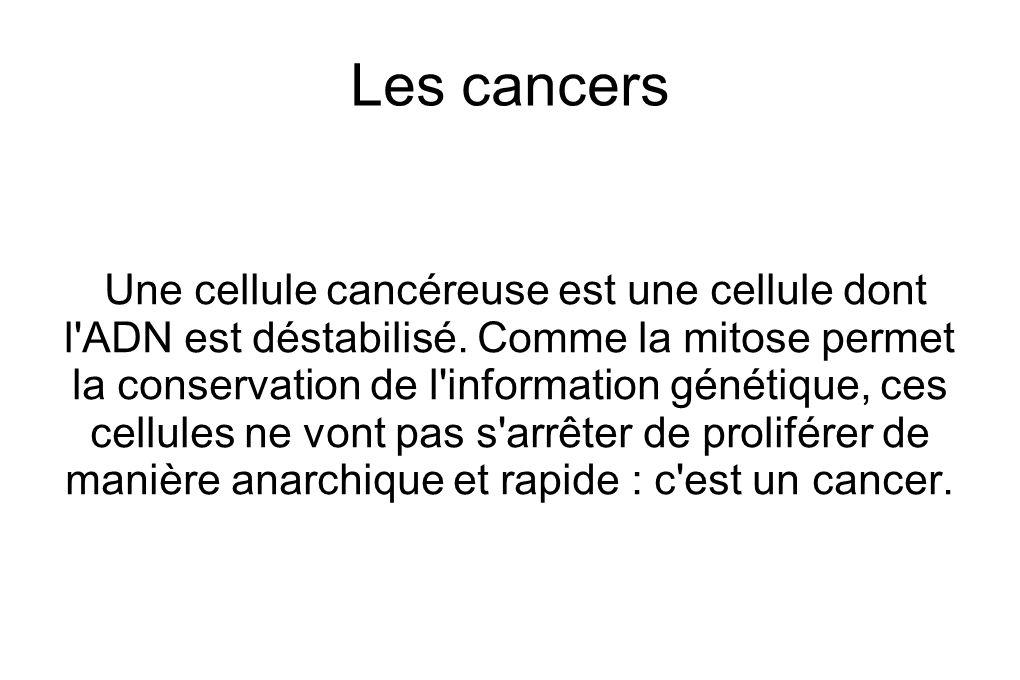 Les cancers