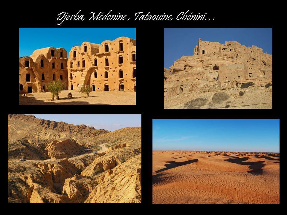 Djerba, Médenine , Tataouine, Chénini…