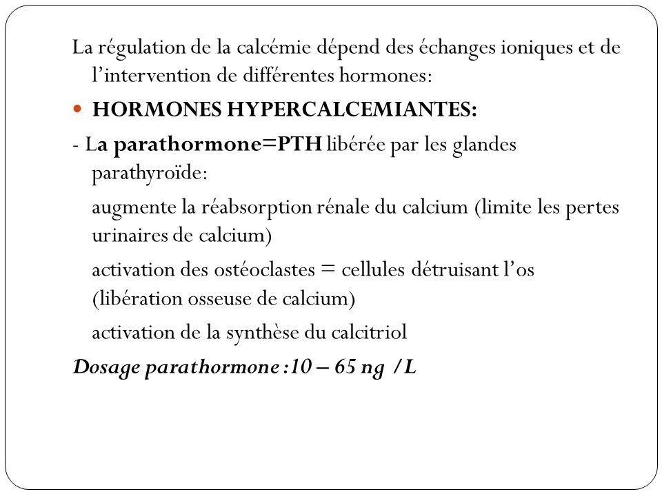La régulation de la calcémie dépend des échanges ioniques et de l'intervention de différentes hormones: