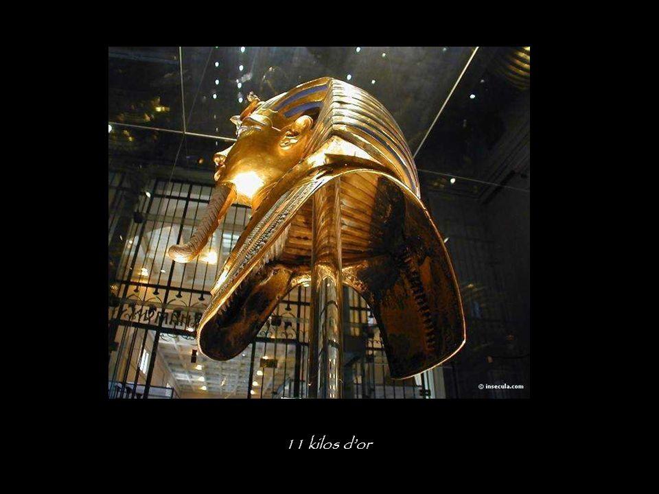 11 kilos d'or