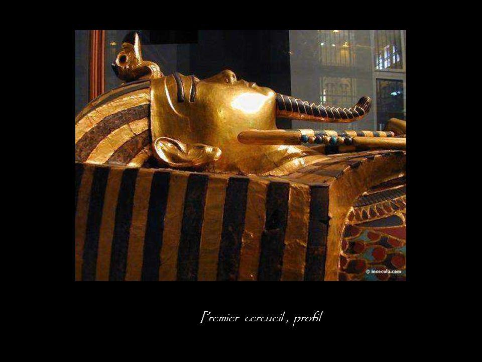 Premier cercueil , profil