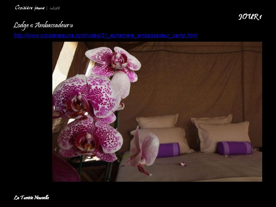 JOUR 1 Lodge « Ambassadeur »