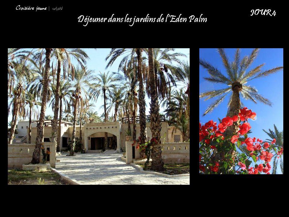 Déjeuner dans les jardins de l'Eden Palm