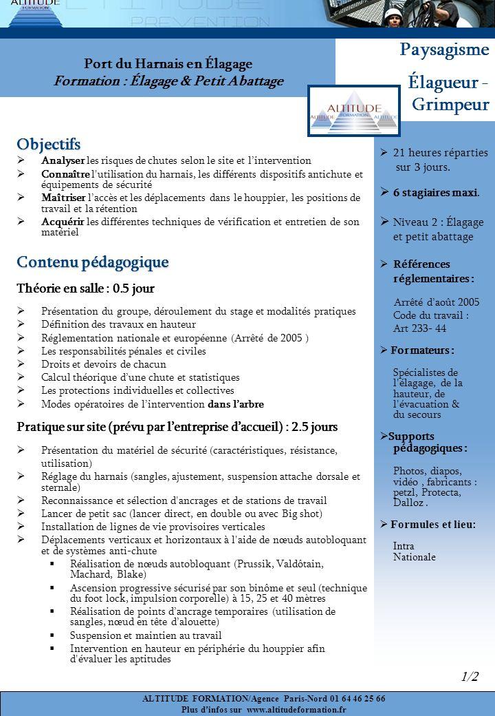 Port du Harnais en Élagage Formation : Élagage & Petit Abattage