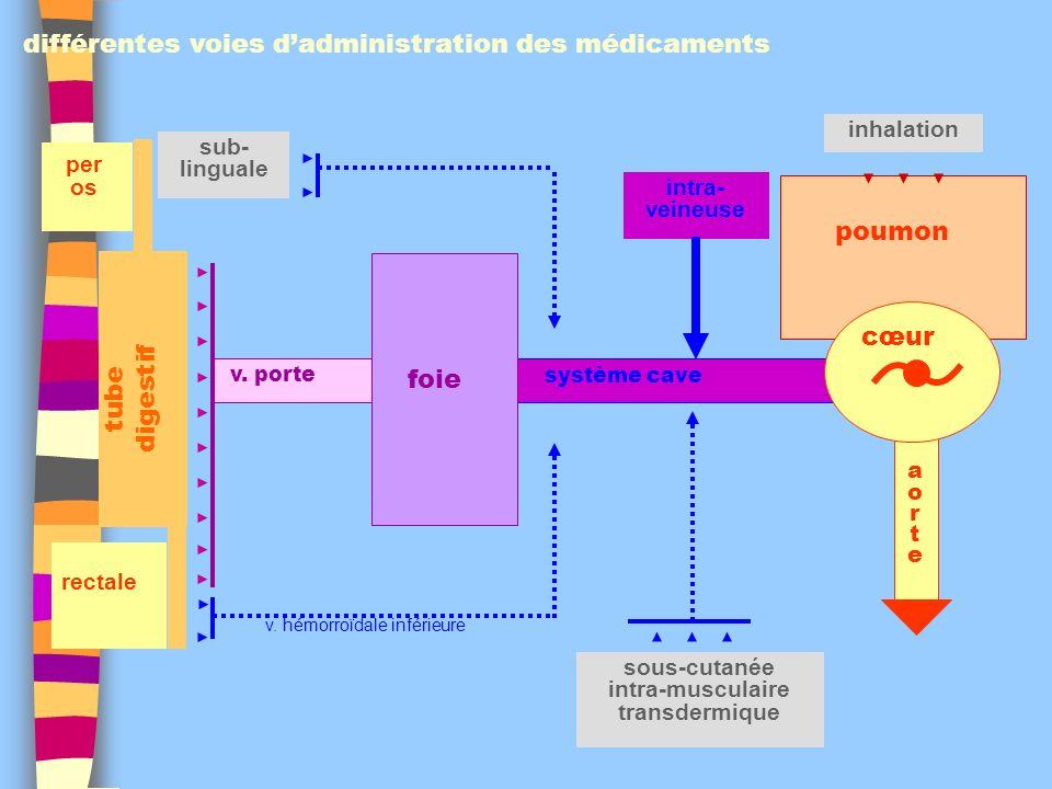 différentes voies d'administration des médicaments