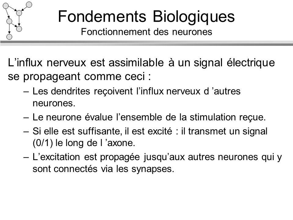 Fondements Biologiques Fonctionnement des neurones