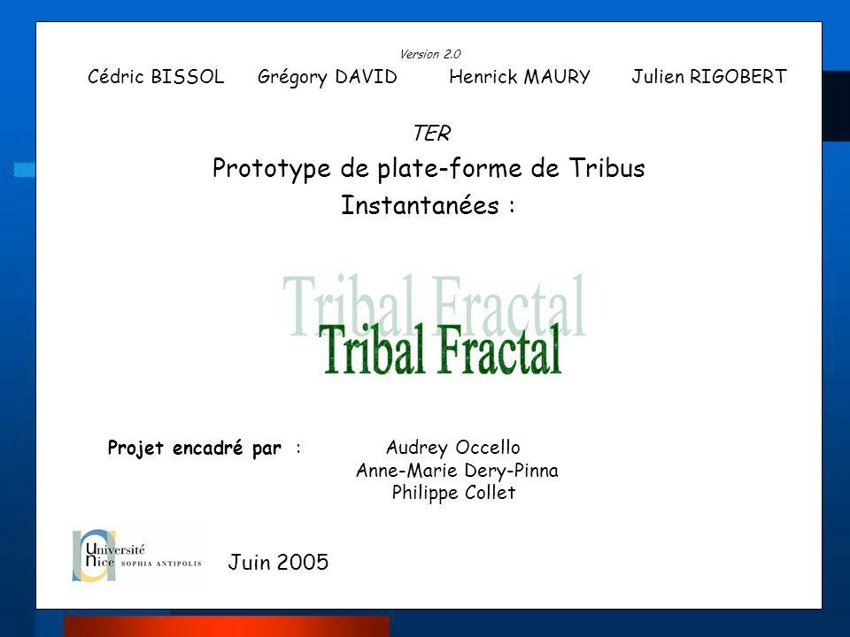 Prototype de plate-forme de Tribus Instantanées :