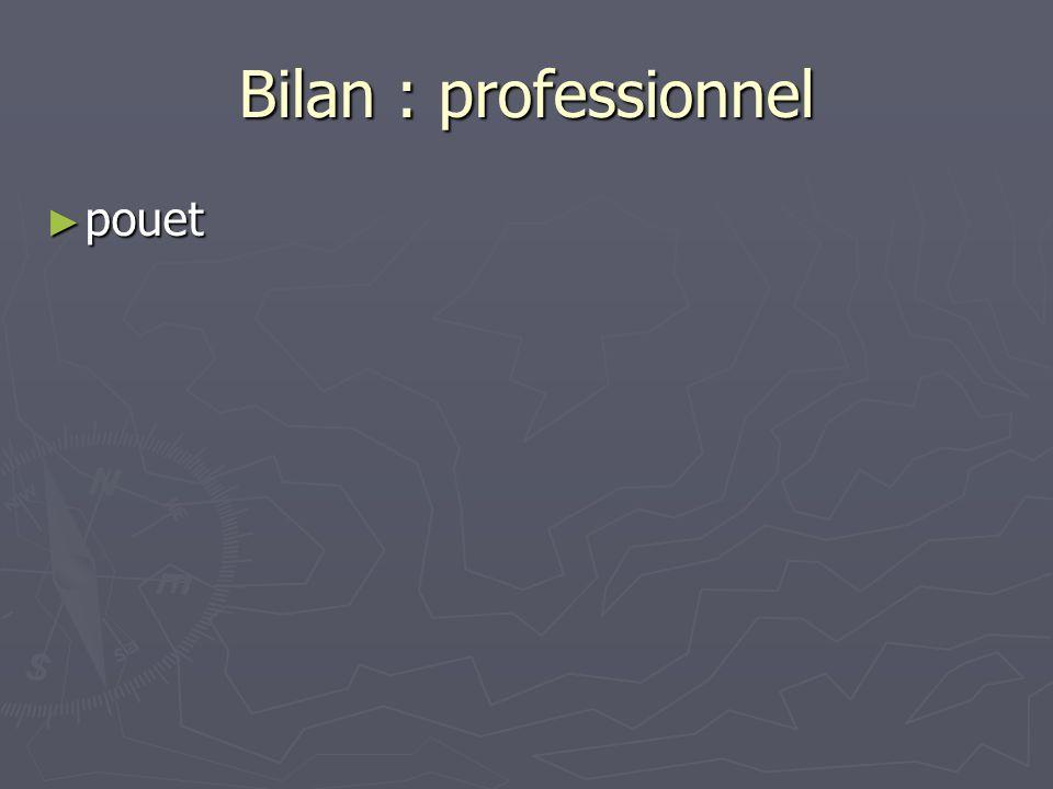 Bilan : professionnel pouet