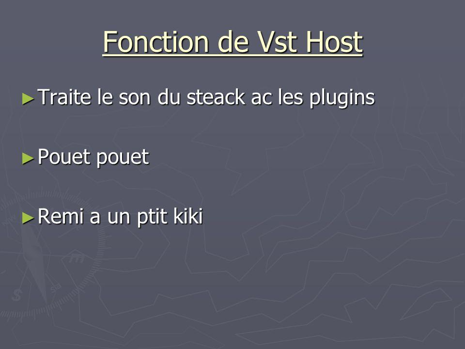 Fonction de Vst Host Traite le son du steack ac les plugins