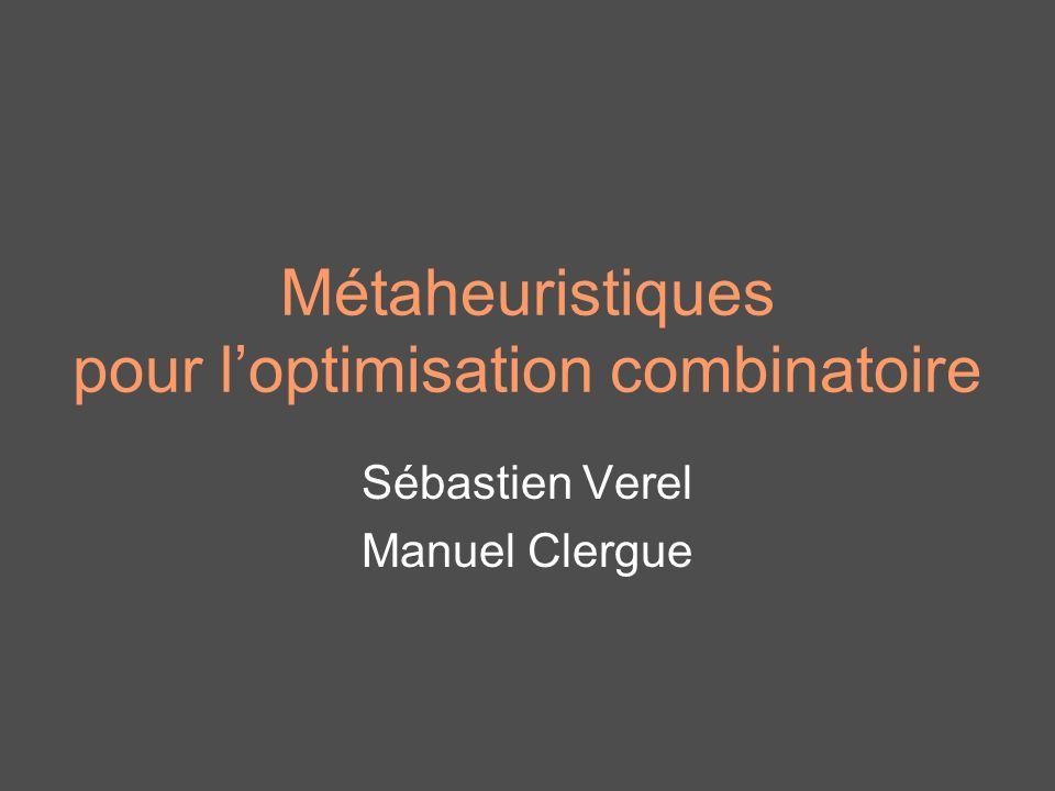 Métaheuristiques pour l'optimisation combinatoire