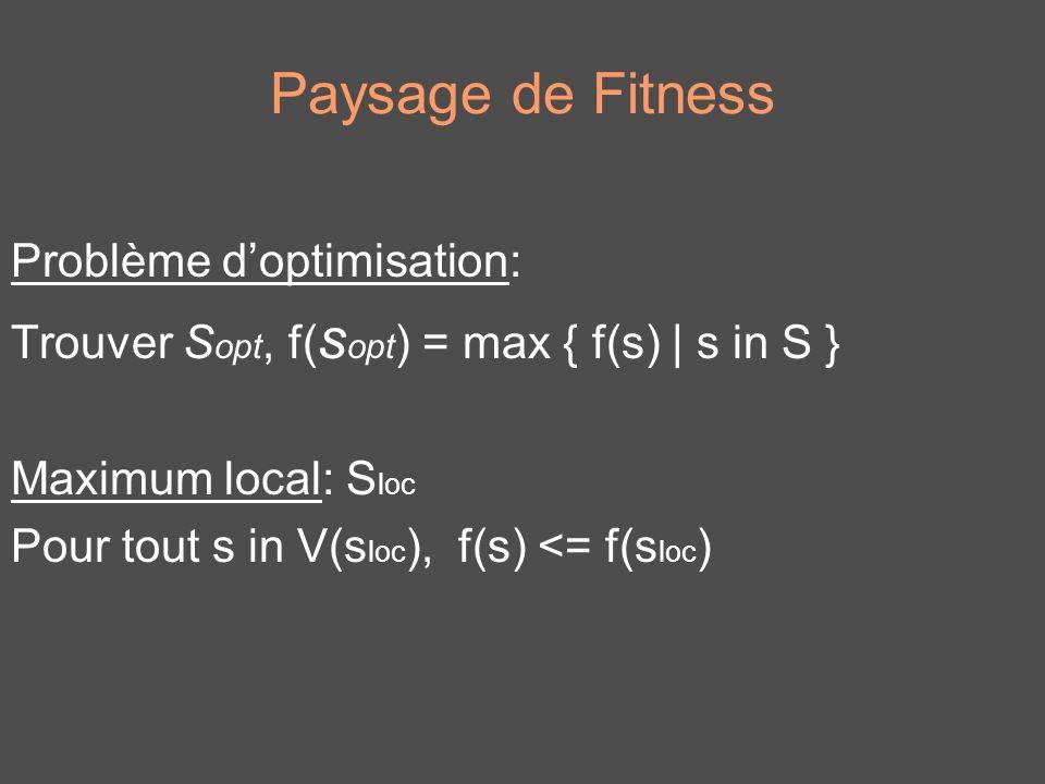 Paysage de Fitness Problème d'optimisation: