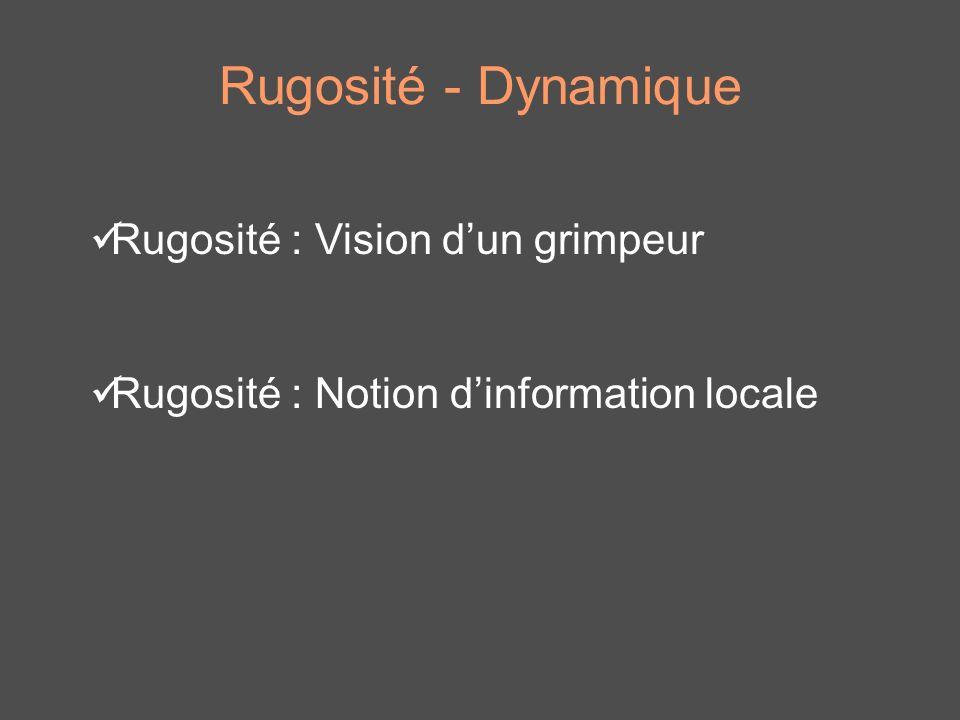 Rugosité - Dynamique Rugosité : Vision d'un grimpeur