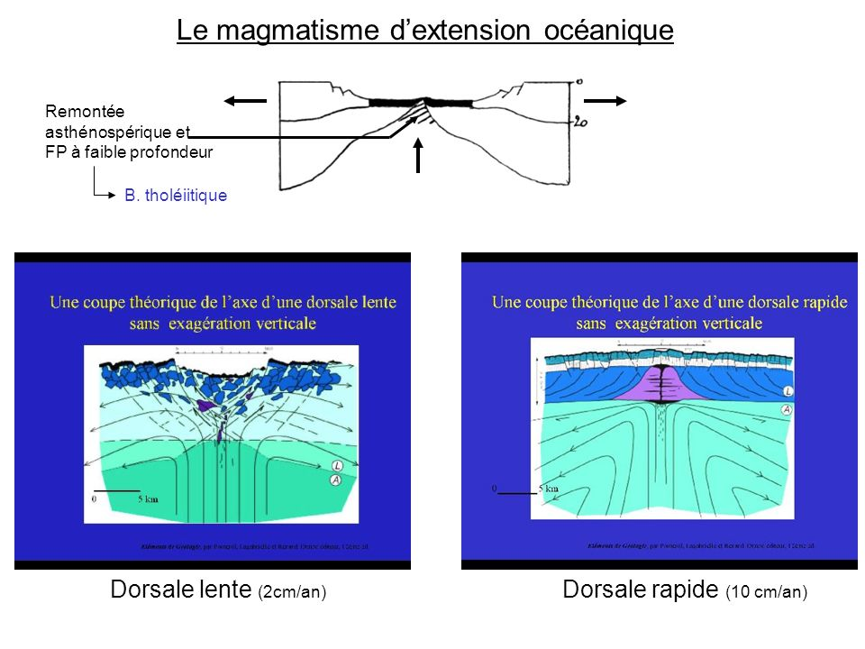 Le magmatisme d'extension océanique