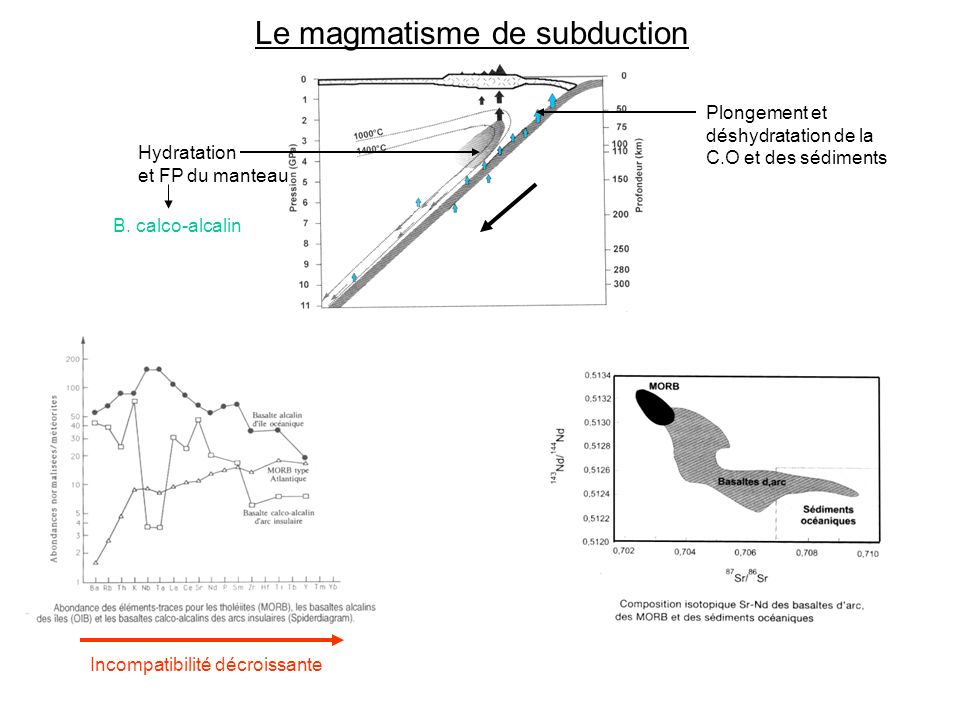 Le magmatisme de subduction