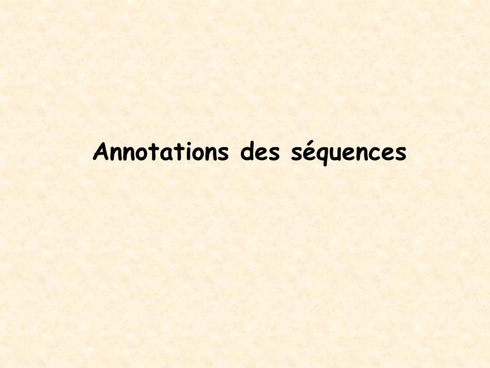 Annotations des séquences