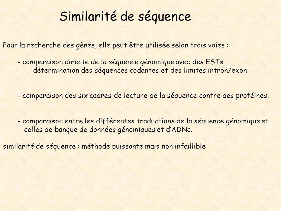 Similarité de séquence
