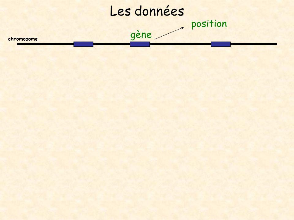 Les données position gène chromosome