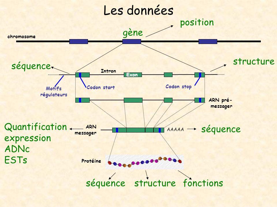 Les données position gène structure séquence Quantification expression