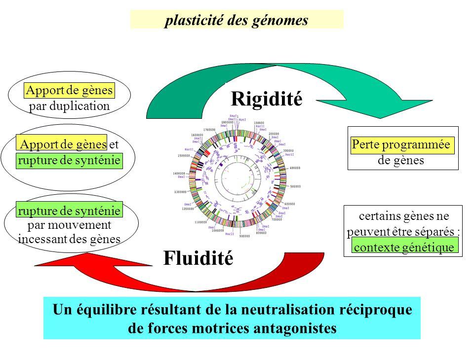 plasticité des génomes